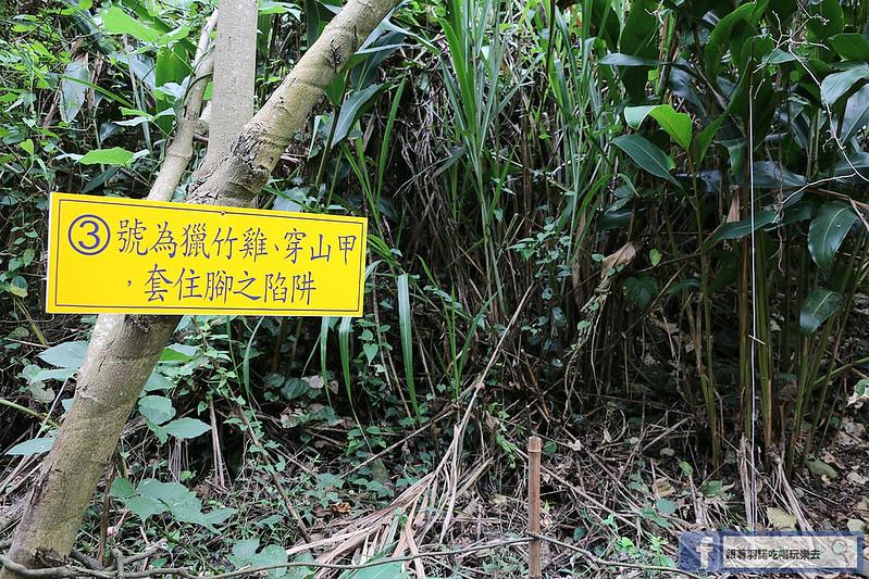 泰安戀情溫泉民宿神畫峽谷213