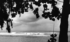 Storms in the distance (Basildon Kitchens) Tags: keebeach blackwhite kauai northshore hawaii