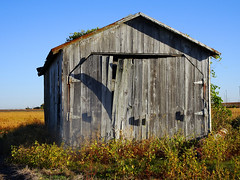 Interstate Shed (Jae at Wits End) Tags: door wood old blue light sky building texture nature field architecture barn rural america outside illinois midwest shadows exterior outdoor decay farm garage country shed entrance warped structure pale doorway faded american crop worn weathered opening portal plain entry bleached faint outbuilding edwardsville discolored