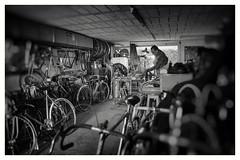 HERSE WIND & FIRE (kick-my-pan) Tags: france french garage bicyclette jos vélo brooks atelier vintagebike cyclotourisme vintagebicycle randonneuse mafac chalumeau idéale renéherse vélosanciens ivansouverain