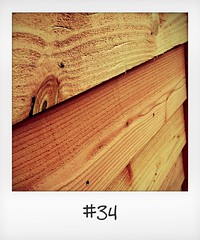 """#DailyPolaroid of 1-11-15 #34 • <a style=""""font-size:0.8em;"""" href=""""http://www.flickr.com/photos/47939785@N05/23097207403/"""" target=""""_blank"""">View on Flickr</a>"""