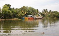 (kiraton) Tags: travel india reisen urlaub kerala indien backwaters reise 2014 kiraton kiratoncom
