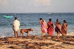 AJY_3027 (arika.otomamay) Tags: beach srilanka trincomalee
