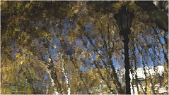 Painting with reflections 1 (jucahelu.jc78) Tags: autumn texture colors reflections painting nikon with lisbon traveling amateur mixtures 2015 nikonistas d7200 jucahelu