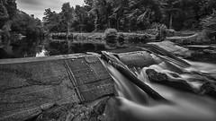 Reflection (Through-my-eyes.) Tags: river riverdart reflections water longexposure bw dartmoor devon logs wood trees weir southwest blackandwhite monochrome outdoor outside