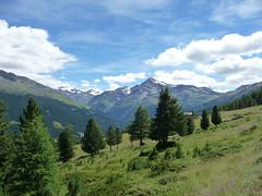 tutti in fila (picciLU) Tags: piccilu alta valtellina lombardia cielo nuvole montagne preti pini
