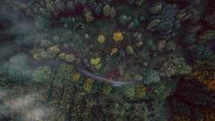 Snake road (mbernholdt) Tags: 500px aerial aerials autumn dji drone photography droneoftheday fruens plantage aerialphotography contentthatflies denmark djiworld djicreator djidrone djiglobal djiphantom dronebois dronebook droneheroes dronephotography dronephotos fromwhereidrone gameofdrones iamdji instagood landscapephotography phantom3 skytango thegreatoutdoors