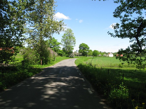 The road between Stenum and Axvall 2010(4)
