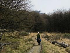 """Torres del Paine: trek du W. Jour 1: à la conquête de Las Torres. <a style=""""margin-left:10px; font-size:0.8em;"""" href=""""http://www.flickr.com/photos/127723101@N04/30140012781/"""" target=""""_blank"""">@flickr</a>"""