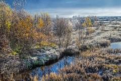 A new day was born (SonjaS.) Tags: lofoten eintagbeginnt morgens tau frost foggy nebel fog dew norwegen sonnenaurgang sunrise