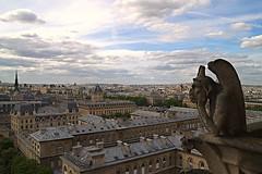Gargoyle Notre Dame de Paris (Nightdix) Tags: notredamedeparis paris parigi notre dame notredame cattedrale francia france capitale canon eos 500d canoneos500d canon500d tamron 1750 gargoyle allaperto