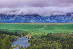Snake River Overlook (gunigantip) Tags: moose wyoming unitedstates us gtnp grandtetonnationalpark grandtetons tetons nationalpark snakeriveroverlook