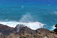 IMG_1279 (michelleingrassia) Tags: halonablowhole blowhole oahu hi hawaii