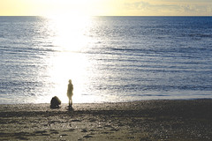 DSC_1480 (Kaloyan Cholakov) Tags: aberystwyth seaside people silhouette sea sunshine sun