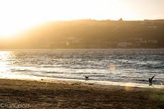 Puesta de sol (franColors) Tags: sunset puesta de sol playa beach la herradura coquimbo