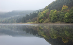 In reflection (Keartona) Tags: ladybower reflections reservoir symmetry forest hillside trees autumn autumnal colours mist morning misty landscape water still calm serene tranquil scenery derbyshire peakdistrict england britain beautiful nature
