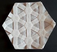 Tessellation with a Tomoko Fuse Star - back (modular.dodecahedron) Tags: tomokofuse origamistar origamitessellation trianglegrid
