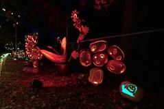 (theleakybrain) Tags: pumpkinnights pumpkin nights mnstatefair p1460093 halloween halloweenwalk minnesota jackolantern jack lantern