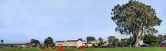 lounging on the big lawn (pbo31) Tags: presidio sanfrancisco california nikon d810 color october fall 2016 boury pbo31 panoramic large stitched panorama mainpost paradegrounds green lawn red chairs blue