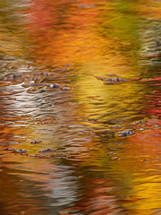 _MG_6179_web (Erik Koffmar) Tags: autumn fall yellow orange red reflection water abstract art colorful colourful colour color koffmarsweden norby uppsala sunshine artistic