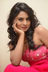 South Actress Deepika Das Hot in Pink Dress- Photos Set-6 (4)