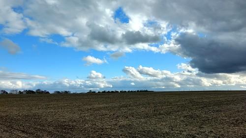 Herbst in den Feldern über Selzen
