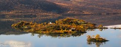 yni (2000stargazerBACK ON DEC20) Tags: yni ustaoset buskerud norway landscape lake reflection autumncolours nature canon september