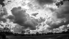 Juggernaut dnt/ (PJT.) Tags: clouds sky weather front lydiate liverpool merseyside lancashire trees fields agricultural sunshine contrast moss silhouette highlighted
