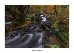 Fervenza de Formariz... (Canconio59) Tags: fervenza cascada ro river formariz galicia espaa spain otoo autumn waterfall colores colours