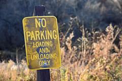 Fall Colors (MTSOfan) Tags: sign weathered discolored noparking loadingandunloading boatlaunch