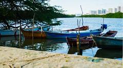 IMG_0081-HDR (vianalucao) Tags: brasil brazil nature natureza aracaju sergipe boats lake boat