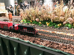 HTS-30 (Peter Parides) Tags: unitedstates christmas trains newyorkbotanicalgardens newyork new york city
