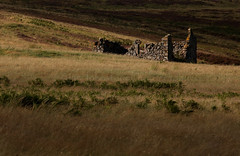 Ruination (ajp~) Tags: lammermuirhills eastlothian scotland ruin hills grass ferns moorland light shadow cottage landscape canon 6d alanjohnstone canon70300mmf456l