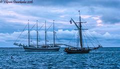 Ships that cross in the night, Tallships festival, Chicago, 2016 (vdwarkadas) Tags: tallships tallshipsfestival tallshipsfestival2016 windy friendsgoodwill water sailing sony sonynex5t