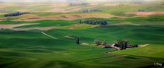 Cabin in the wheats (lhongfoto) Tags: field travel green wheat countryside hills cabin state park steptoe sunslight washington united states palouse