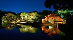 Rikugien (tokyobogue) Tags: tokyo japan rikugien garden night dusk autumn colours red orange yellow water pond lights nikon nikond7100 d7100 longexposure evening trees