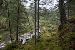Nationalpark Hohe Tauern in der Umgebung der Rudolfshtte am Weisee-bw_20150926_2669.jpg (Barbara Walzer) Tags: uttendorf nationalparkhohetauern weissee gletscherwelt berghotelrudolfshtte weisseegletscherwelt alpinzentrumrudolfshtte