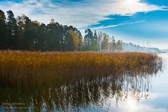 _DSC3413-HDR.jpg (gynsy75) Tags: autumn colors espoo autumncolors hdr espoonlahti