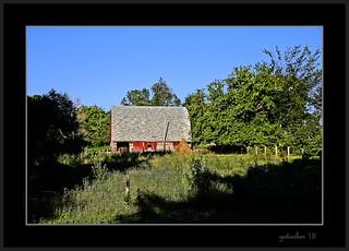 Barn on July 15