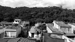 Jaraguá (Yann Cerri) Tags: trees houses brazil blackandwhite bw monochrome brasil outside saopaulo interior sãopaulo monochromatic pb arvores casas pretoebranco jaragua arlivre monocromático