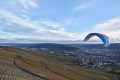 Nur Fliegen ist schner... (chrissie.007) Tags: nature deutschland view natur vineyards valley aussicht paraglider landschaft ausblick gleitschirm badenwrttemberg sddeutschland weinberge schwabenland remstal kleinheppach januar03