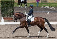 161023_Aust_D_Champs_Sun_Med_4.3_6867.jpg (FranzVenhaus) Tags: athletes dressage australia siec equestrian riders horses performance event competition nsw sydney aus