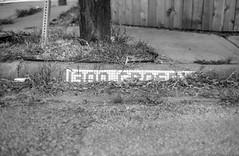 2016-10-24-0035 (alexdotbarber) Tags: 1500 1300crosbystreet crosbystreet houston houstonbluetile houstonfourthward ilforddelta100 voigtlanderbessar3a voigtlandernoktonclassic40mmf14 blackandwhite bokeh f2 rangefinder tile