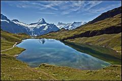 Grindelwald ,The Bachalpsee  A view to the Wetterhorn & the Finsteraarhorn  .No.9088. (Izakigur) Tags: alpes alpen alps alpi berneroberland bern berne ch cantonofbern dieschweiz d700 europa wetterhorn grindelwald bachalpsee bachalp water lake lac wasser green nature cflickr nikkor nikond700 nikkor2470f28 thelittleprince thejungfrauregion izakigur swiss suiza suisia suizo suïssa svizzera switzerlnad musictomyeyes myswitzerland ilpiccoloprincipe lepetitprince reflections