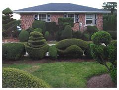 Pearl's Place (daveelmore) Tags: pearlfryar house home residence pearlfryartopiarygarden topiary garden hedges bushes landscaping yard art artistic creative bishopvillesc mzuiko918mm
