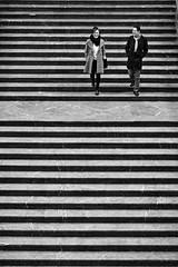 lockstep of joy (O.Krger) Tags: hannover niedersachsen deutschland germany rathaus treppen stairs streetphotography sw schwarzweis socialdocumentary streetlife bw bianconero blackwhite monochrom peopleinthecity people personen urban streetpassionaward