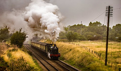 Witherslack Hall at Woodthorpe (Peter Leigh50) Tags: great central railway 6990 witherslack hall woodthorpe gcr steam locomotive engine gwr