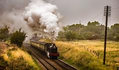 Witherslack Hall at Woodthorpe (Peter Leigh50) Tags: great central railway 6990 witherslack hall woodthorpe gcr steam locomotive engine gwr