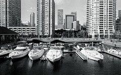 Exclusive Docking Space (Bill Smith1) Tags: believeinfilm berggerbrf400 billsmithsphotography d7611 harbourfront heyfsc nikkoraislenses nikonfm2n october2016 toronto filmshooterscollective nikkorais28f28lens