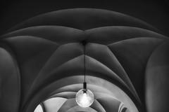 lonely lamp (in explore) (tan.ja1212) Tags: münchen museum decke lampe monochrom paläontologischesmuseum